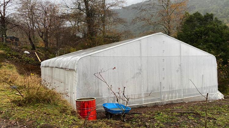 Inauguran primer invernadero en Chile calefaccionado con agua termal